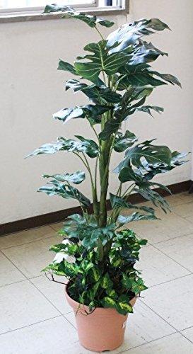 山久 シルクフラワー の モンステラ 110 1107-0784 CT触媒加工 snb 人工観葉植物 造花 B00UYQ59C4