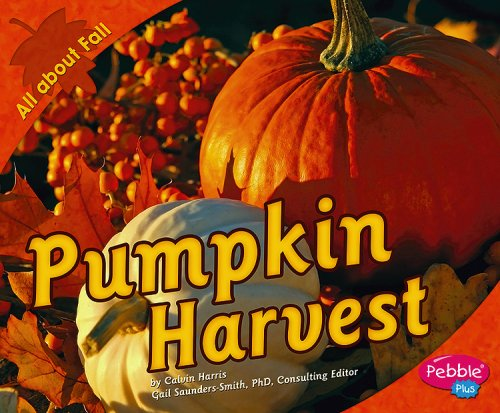 Pumpkin Harvest (All about Fall)