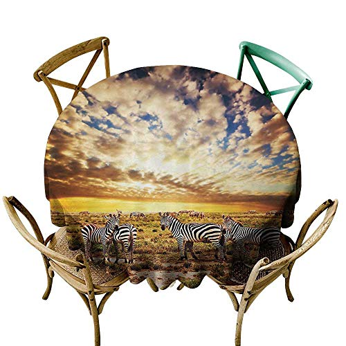 Anti-Fading Tablecloths Safari Decor Collection Dreamy Photo of Savannahs at Sunset with Zebras on the Grassland Dramatic Sky Wild Nature Deco It's Good to be Home Gorgeous High End Quality -