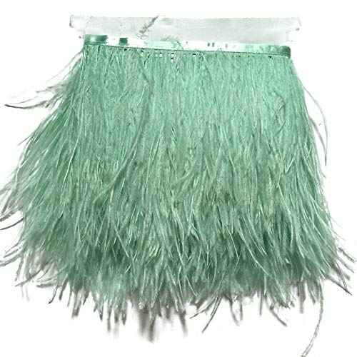 (Sowder Ostrich Feathers Trims Fringe With Satin Ribbon Tape Dress Sewing Crafts Costumes Decoration Pack of 2 yards(mint green))