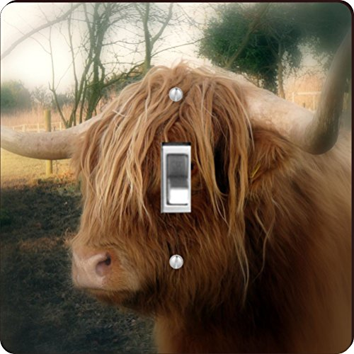 Rikki Knight RK-LSPS-9151 Highland Cow Close-Up Design Light Switch Plate Cover by Rikki Knight