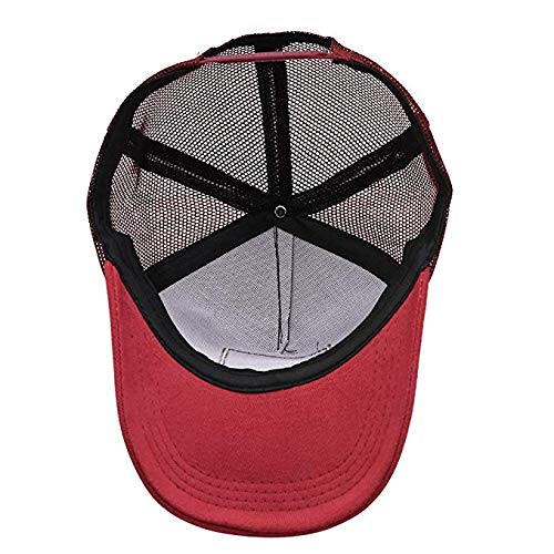Lion Big Cat Mesh Caps Adjustable Unisex Snapback Trucker Cap