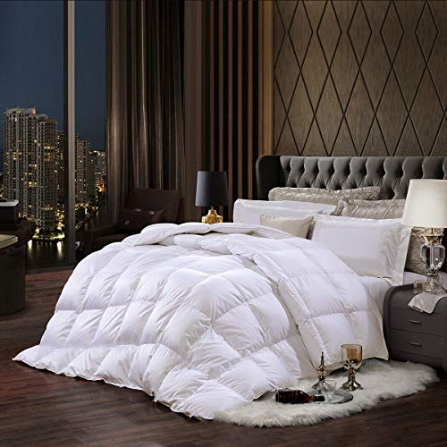 Coozii Goose Down Alternative Comforter Queen 90 x 90 Inch,Ultra Soft Brushed Microfiber? Quilt with Corner Tab for All Season Hypoallergenic Plush Mircofiber Comforter Duvet Insert