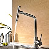 Efluky Stainless Steel Single Handle Kitchen Sink Faucet