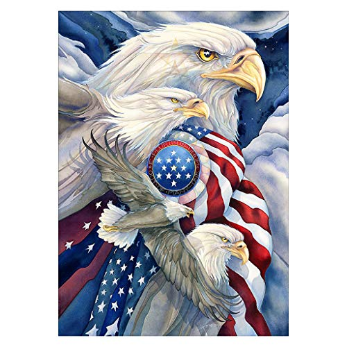 mgjyjy Eagle Flag DIY 5D Diamond Painting by Number Kits,Full Drill Diamond Crystal Rhinestone Embroidery,30cmx40cm/12inx16in (Embroidery Eagle Flag)