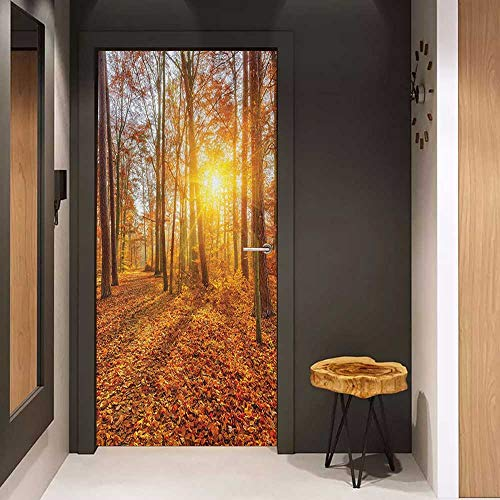 Wood Door Sticker Forest Foggy Sunset Vibrant Sunbeams Rural Country Woodland in Fall Scenery Image Easy-to-Clean, Durable W23 x H70 Orange Brown Yellow ()