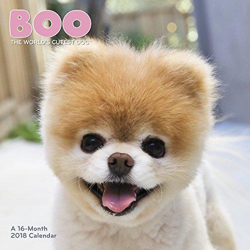 2018 Boo Wall Calendar (Mead)