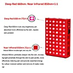 SGROW Red Infrared Light Therapy Device,60 LEDs Red 660nm and Near Infrared 850nm-Red & Near Infrared Led Light Therapy for Skin Pain Relief Anti-Aging-FDA Cleared ...