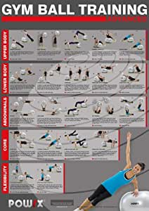 Amazon.com : Gym Ball Training Chart, For an Advanced Total Body Workout, 20 different exercises