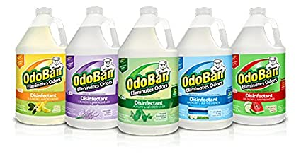 where to buy odoban