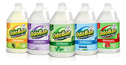 (OdoBan Disinfectant Odor Eliminator and All Purpose Cleaner Concentrate, 5 Gal Scent Assortment)