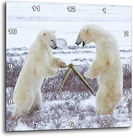 3dRose DPP_206103_3 Polar Bears Sparring