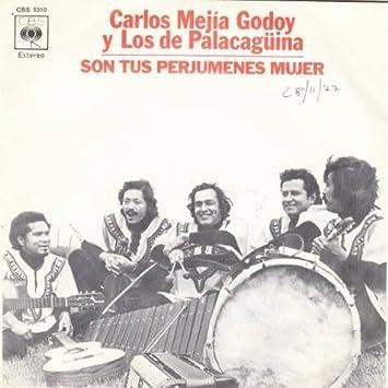 son tus perjumenes de mujer - carlos mejia godoy