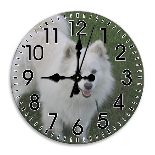 Arabic Numbers Frameless Round Wall Clock Good Quiet Awesome Clock Diameter 9.8 Inch (Eskimo Brothers Halloween)