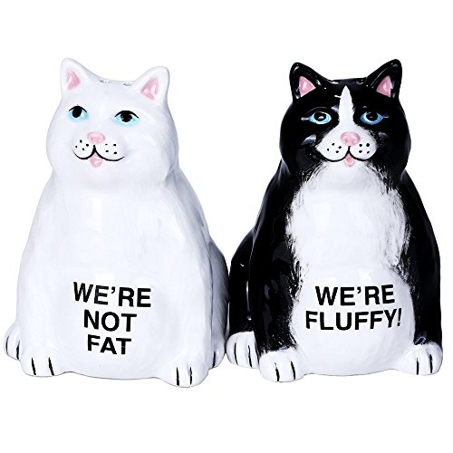 Pacific Giftware Fluffy Fat Cats Ceramic Magnetic Salt and Pepper Shaker Set … (Collectible Pepper Salt Shakers)