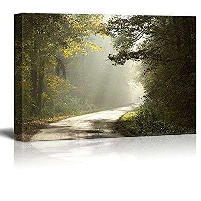 Beautiful Scenery Landscape Country Road Running Through The Deciduous Forest on a Foggy Morning - Canvas Art Wall Art - 24