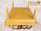 Titan Incubators 30x30 Brooder Hen / Poultry Heat Lamp Replacement