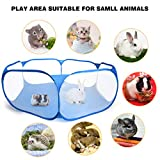 Casifor Guinea Pig Cage Rabbit Cage Indoor with Mat