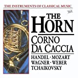 The Instruments Of Classical Music: The Horn