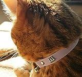 Kittyrama Mauve Cat Collar. Award Winning. As Seen