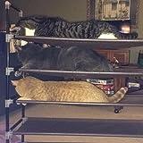 Great shoe rack!