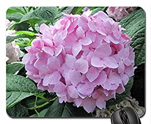 Flowering Plants Changed the World 41 Mouse Pad, Mousepad (Flowers Mouse Pad, 10.2 x 8.3 x 0.12 inches)
