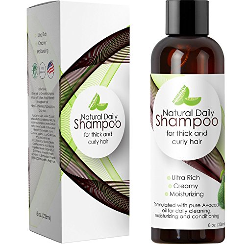Ethnic Hair Shampoo for Thick and Curly Hair - Best Shampoo for African American Hair - Sulfate-free Natural Oil Treatment w/ Avocado Oil for Men & Women - Ph Balanced & USA Made By Honeydew Products (Best Shampoo For African American Hair Growth)