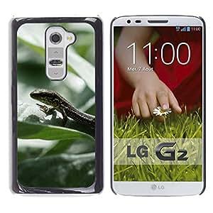 Caucho caso de Shell duro de la cubierta de accesorios de protección BY RAYDREAMMM - LG G2 D800 D802 D802TA D803 VS980 LS980 - Lizard Rainforest Summer Green Nature