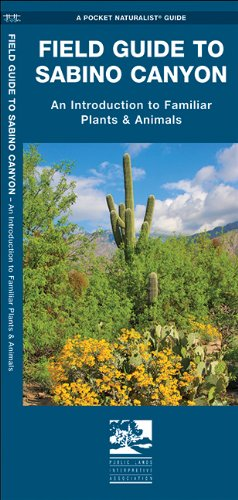 Sabino Canyon, Field Guide to: Pocket Naturalist Guide (Pocket Naturalist Guide Series)
