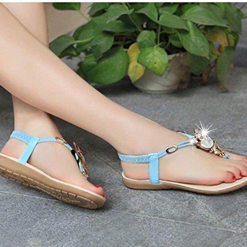 Calzado de mujer,Amlaiworld Diamantes de imitación Búho dulce zapatos de las sandalias del dedo del pie del clip Beach (38, Azul)