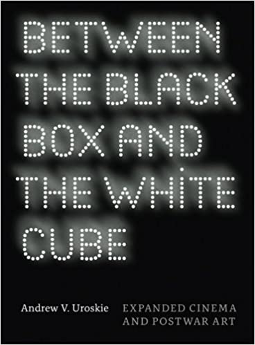 Between the Black Box and the White Cube: Expanded Cinema
