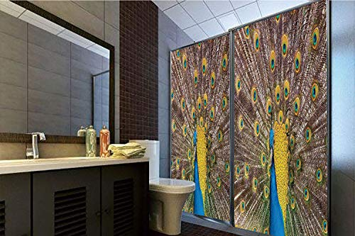 Horrisophie dodo 3D Privacy Window Film No Glue,Peacock Decor,Peacock Displaying Feathers Golden Vibrant Colors Eye Shaped Patterns Picture,70.86