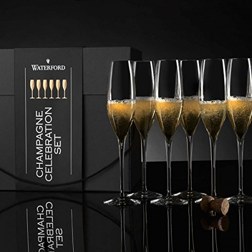 Elegance Classic Toasting Champagne Flute Set of 6