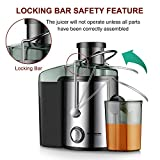 Juicer Juice Extractor, Homeleader Stainless Steel