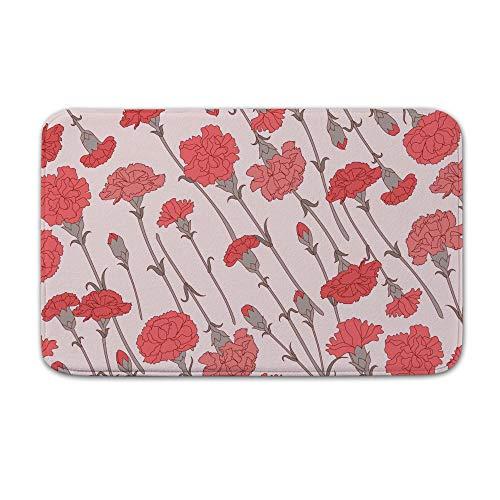 - DKISEE Indoor Outdoor Entrance Rug Floor Mat Bathmat Carnation Pattern Classic Doormat, 15.7