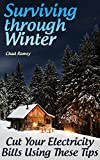 img - for Surviving through Winter: Cut Your Electricity Bills Using These Tips: (Off-Grid Living, Homesteading) book / textbook / text book
