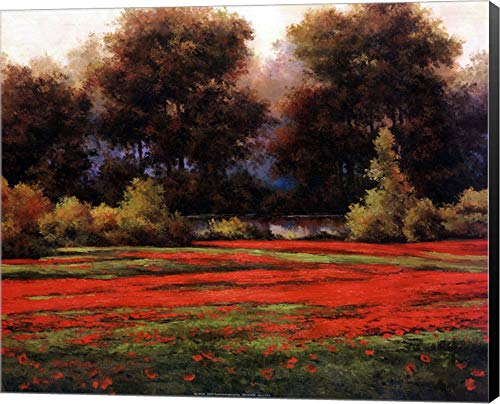 (Autumn Poppies II by T.C. Chiu Canvas Art Wall Picture, Museum Wrapped with Black Sides, 20 x 16 inches )