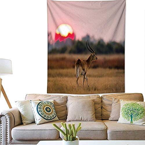 - Anyangeight Dormitory tapestryAntelope Standing Against The Background of a Large of Sunrise Sun 57W x 74L INCH