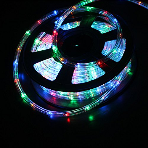 2 Wire Led Rope Light Power Cord in US - 4