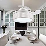 ZPSPZ Ceiling fan White Minimalist Stealth Restaurant Ceiling Fan Living Room Modern Fashion Remote Control Fan Lamp