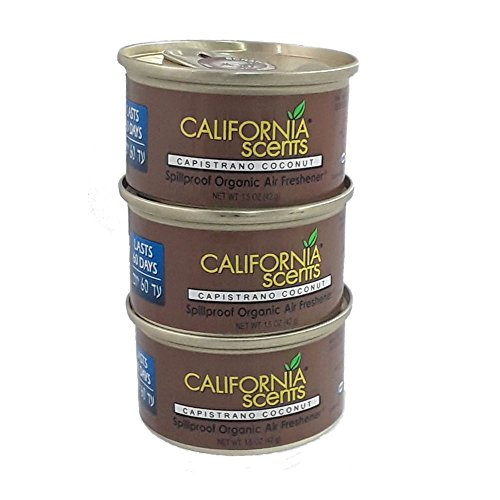 auto air freshener canisters - 2