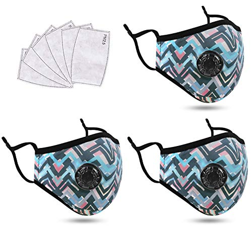 Dust Màsc for Adults Reusable and Washable with Activated Carbon Fiillters Cotton Face Mack