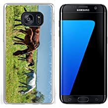 Luxlady Samsung Galaxy S7 Edge Clear case Soft TPU Rubber Silicone IMAGE ID 30717326 Horses in the mountains equine nag hoss hack dobbin a solid hoofed plant eating domesticate