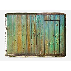 Ambesonne Vintage Bath Mat, Rustic Old Wood Gate Dated Tuscany House Entrance with Antique Texture Photograph, Plush Bathroom Decor Mat with Non Slip Backing, 29.5 W X 17.5 W Inches, Mint Brown
