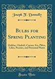 Amazon / Forgotten Books: Bulbs for Spring Planting Dahlias, Gladioli, Cannas, Iris, Phlox, Lilies, Peonies, and Perennial Plants Classic Reprint (Joseph F Donnelly)