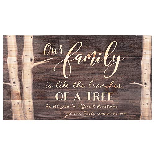 P. Graham Dunn Our Family Tree Dark Distressed 24 x 14 Inch Solid Pine Wood Pallet Wall Plaque Sign (Wall Plaques Family)