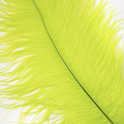Ostrich Feathers for Centerpieces- Wedding Decorations- Feathers for Crafts, 12 Pieces, 13-16 inch, Lime -