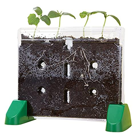 Educational Insights Sprout & Grow Window (Educational Toys Kindergarten)