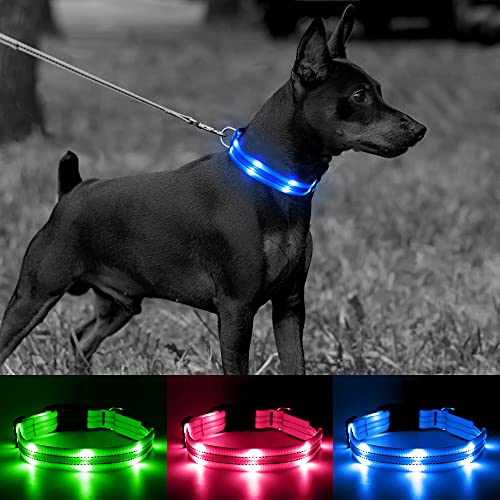 Candofly Rechargeable Light Up Dog Collars - Nylon Breathable LED Dog Collar Double Lights Glowing Pet Collars Perfect for Night Walking Keep Your Dogs & Cats Be Safe (Blue, Medium)