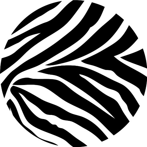 Wall Pops WPD99050 Peel and Stick Go Wild Zebra Decals, Four 13-Inch Dots, - Circle Zebra